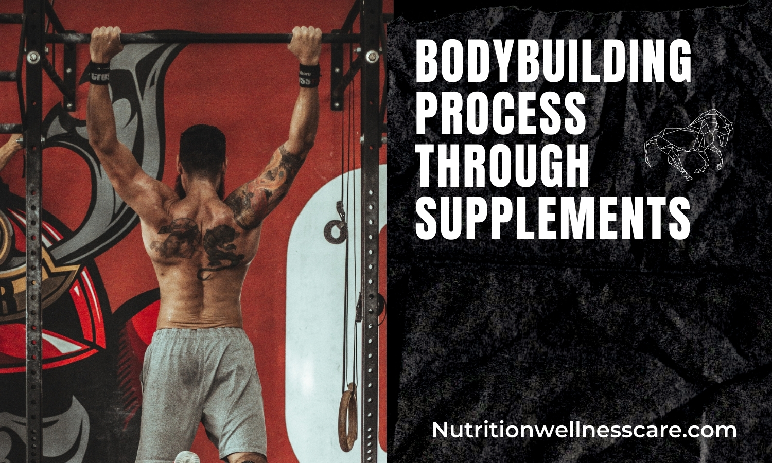 BODYBUILDING PROCESS THROUGH SUPPLEMENTS